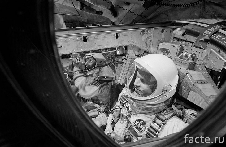 Gemini-5