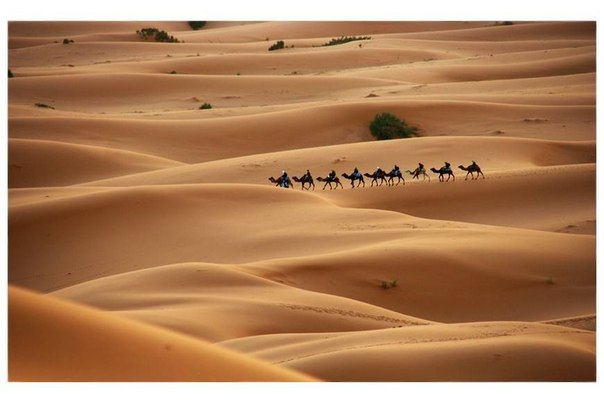 В каких странах много пустынь