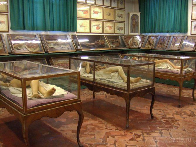 музей кунскамера