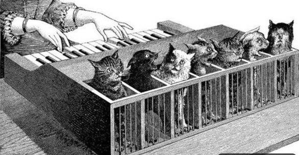 Как появился кошачий клавесин?