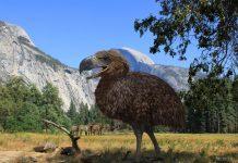 Вымершая птица Титанис