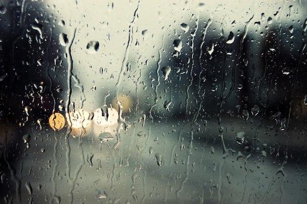 20 любопытных фактов про дождь