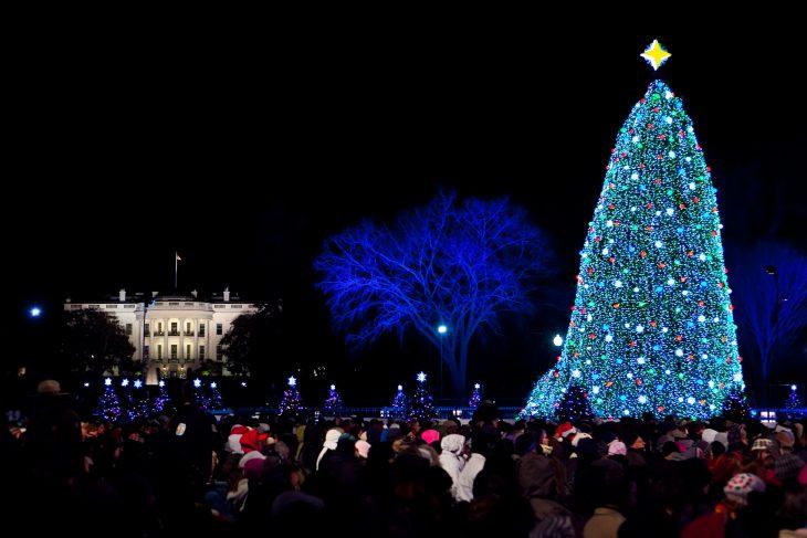 Елка в Вашингтоне