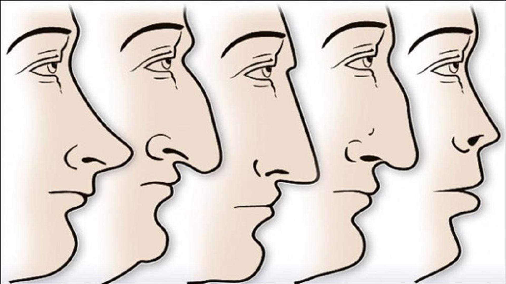 нос характер картинки игры помогают