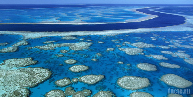 Легендарный Большой Барьерный риф
