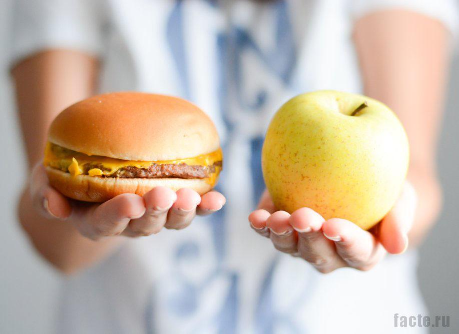 Ошибки, мешающие похудению - неправильное питание