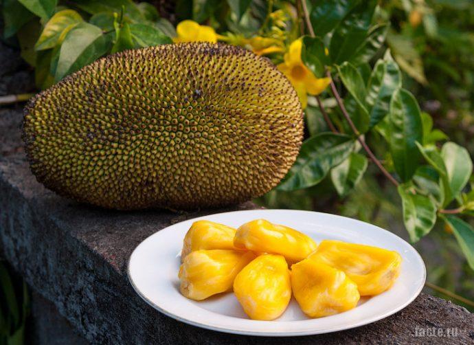 плоды с островов океании