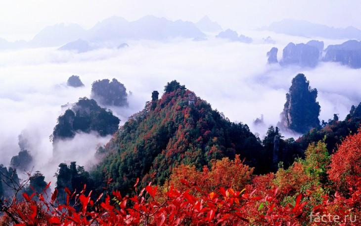 Китайский национальный парк