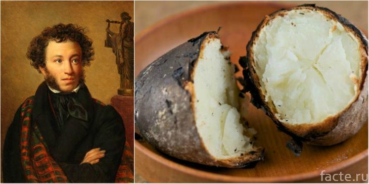 Пушкин любил картошку