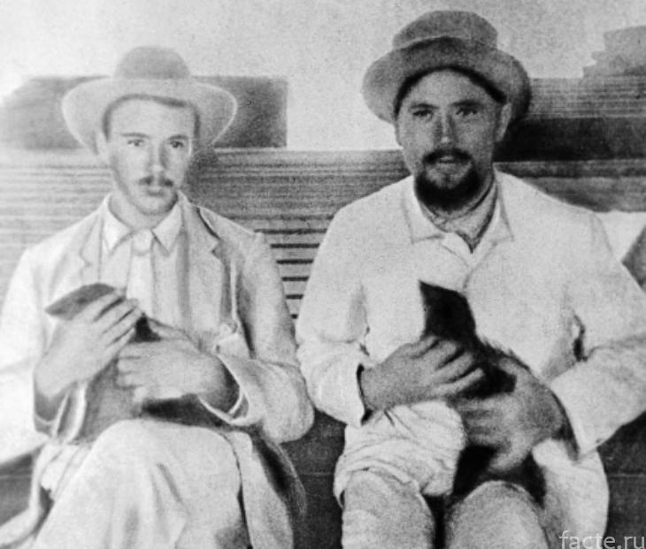 Чехов и мангуст