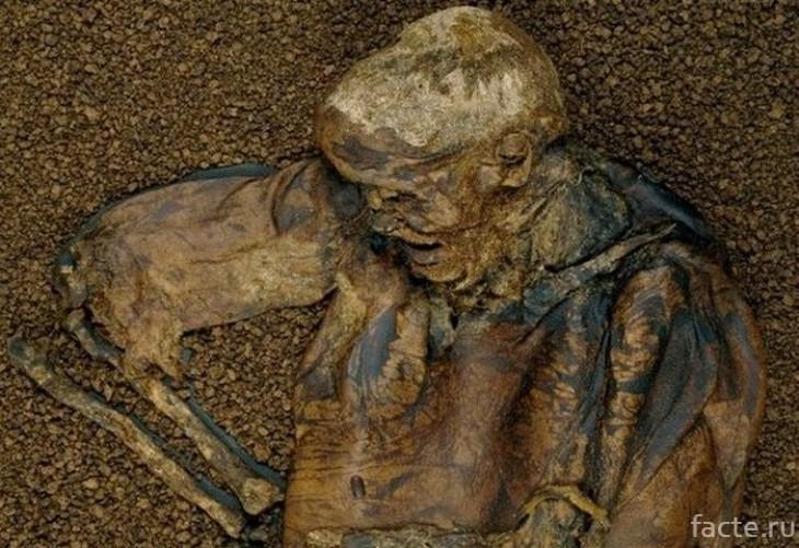 Болотная мумия