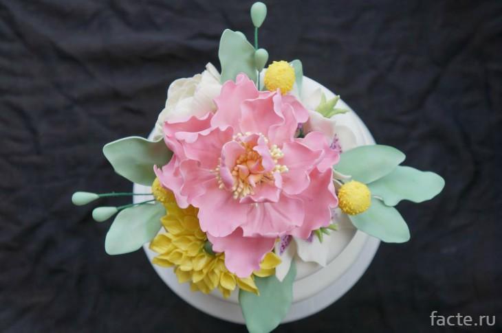 Цветы которые можно есть