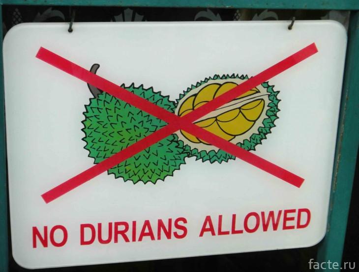 Дуриан запрет на вход