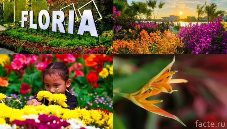Флория райский сад в Малайзии