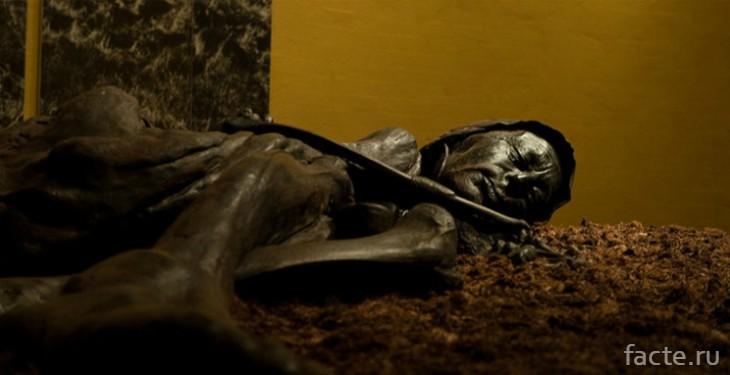 Фото мумии