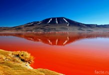 Кровавая вода