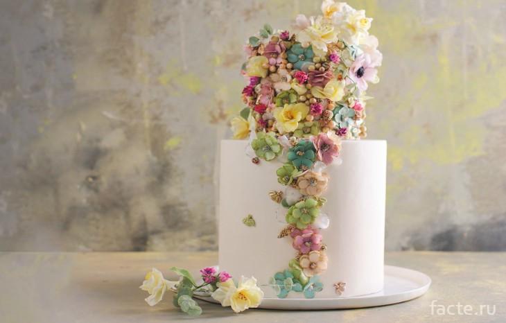 Мегги Остин торт