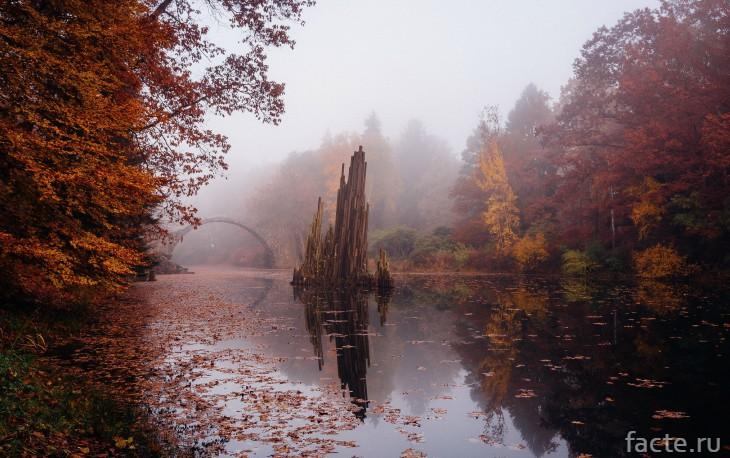 Мост осенью