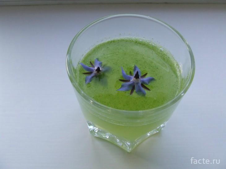 напиток из огуречной травы