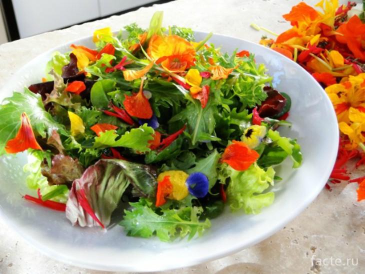 Салат из цветов