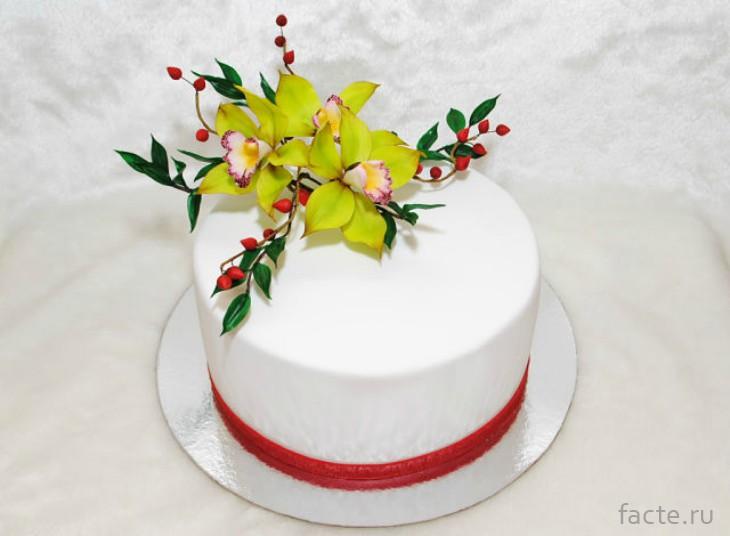 Торт с орхидеей