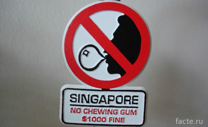 Запрет на жвачки