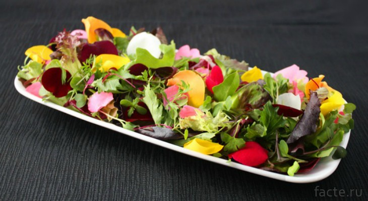 Цветы в салате
