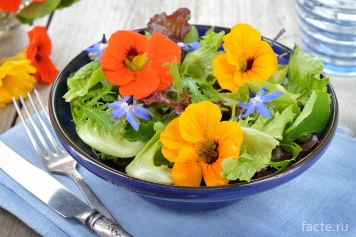 Цветочный салат