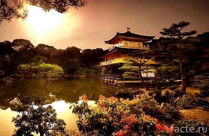 Японскиq сад 2