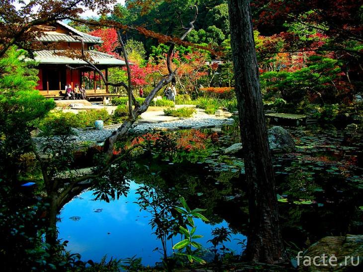 Японскиq сад 5