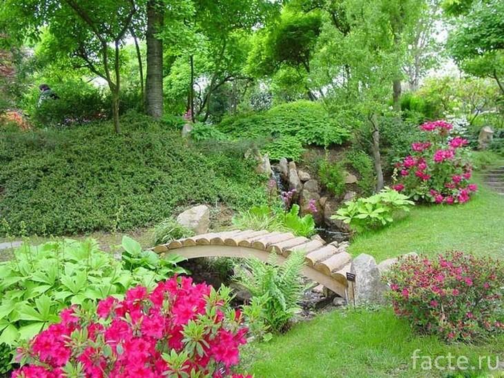 Японскиq сад 9