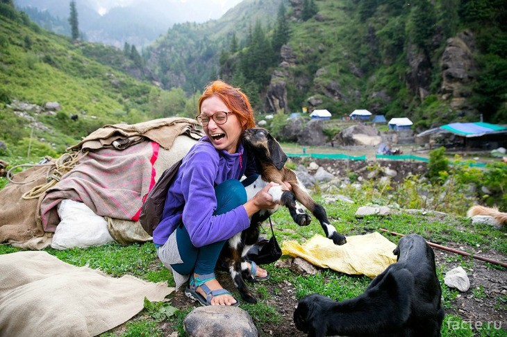 В горы с собакой