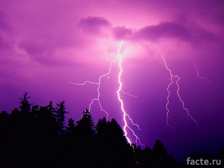 Молния над лесом