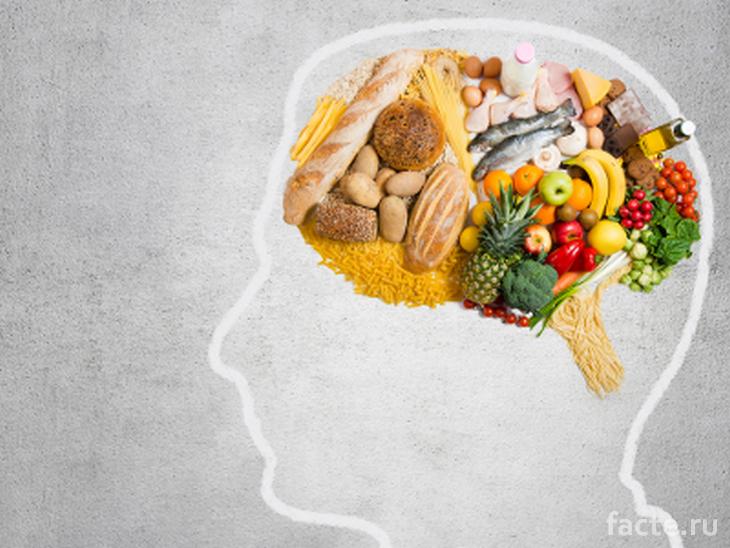 Все мысли - только о здоровой еде