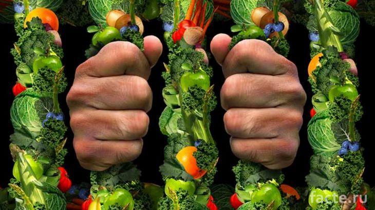 Так ли безобидно здоровое питание?
