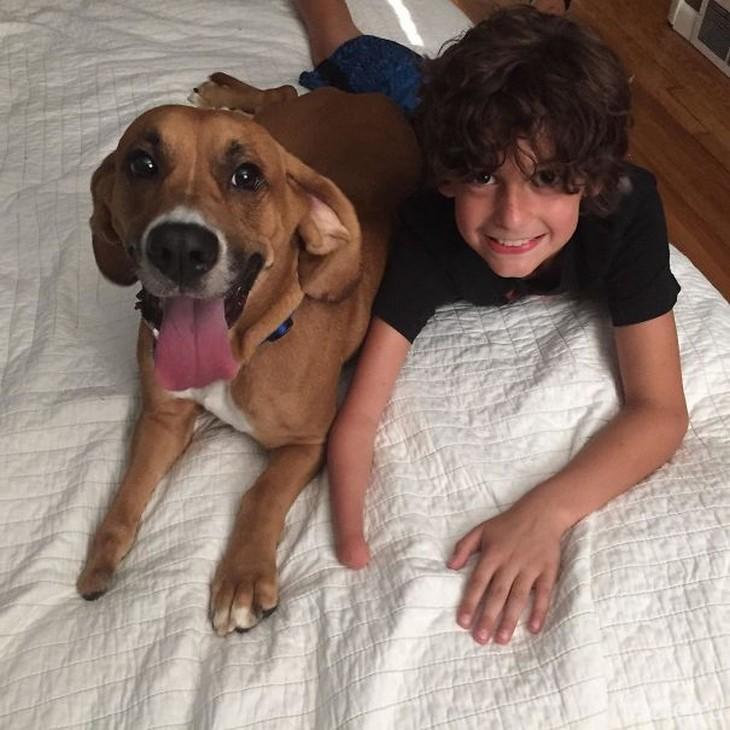 С собакой на кровати