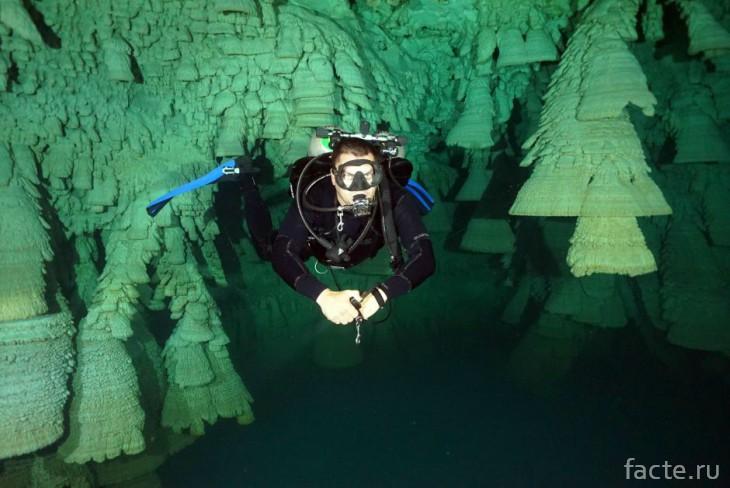 В пещере