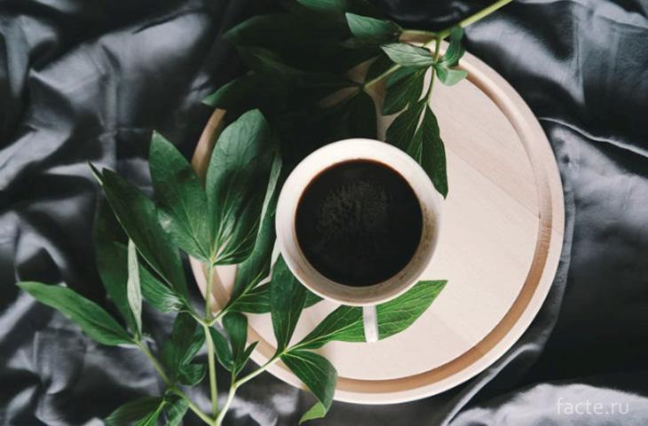 Чашка с кофе и веткой эвкалипта