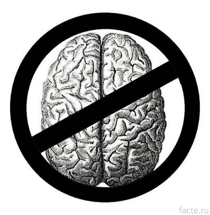 Отсутствие мозга