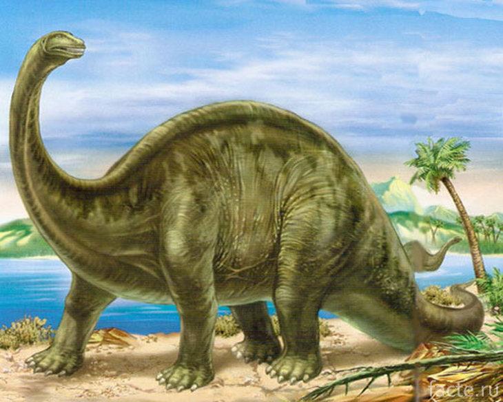 Апатозавр на берегу