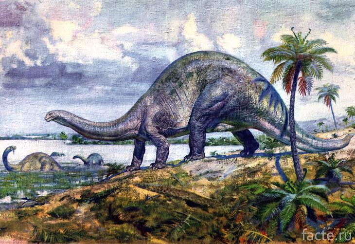 Огромный апатозавр