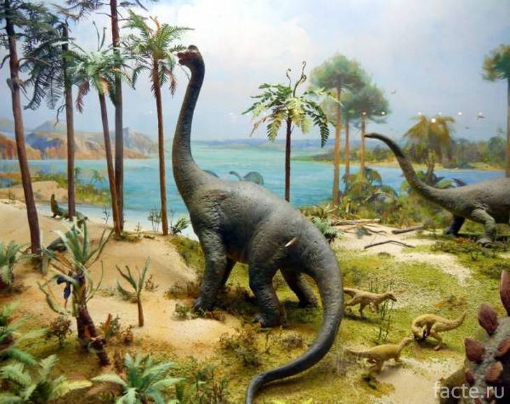 Бронтозавр и пальмы