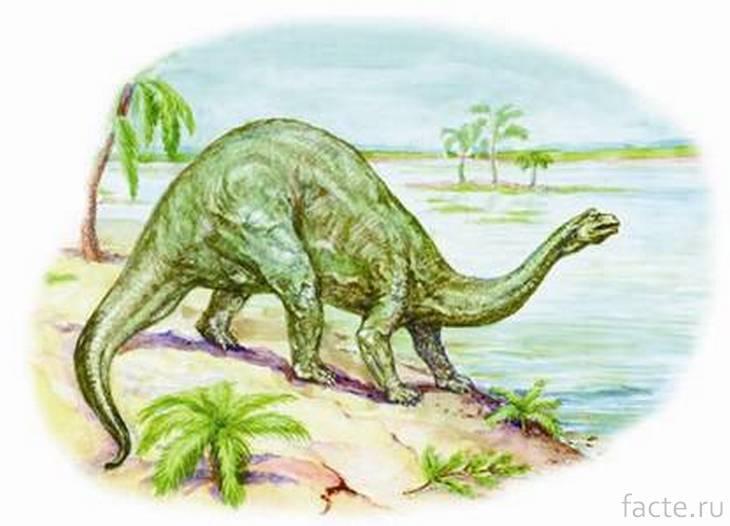 Бронтозавр на берегу моря