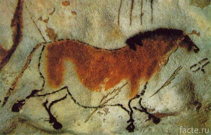 Наскальная живопись. Лошадь
