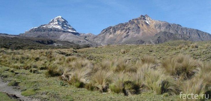Парамо в Андах