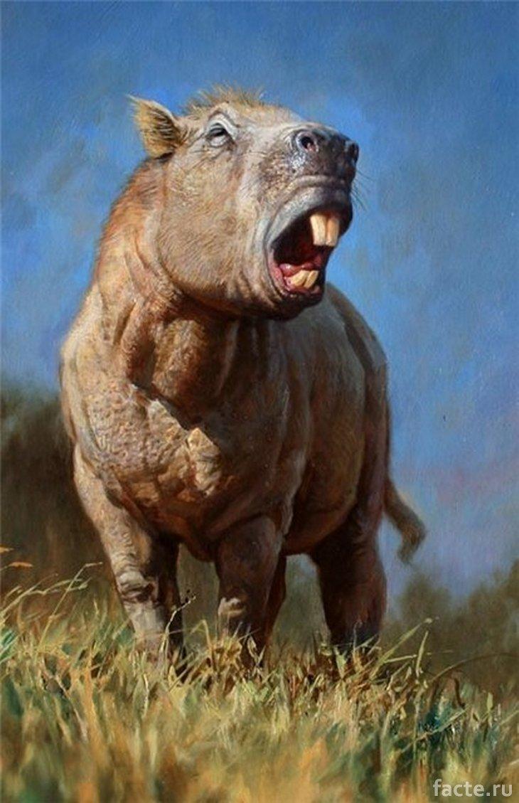 Огромный доисторический грызун