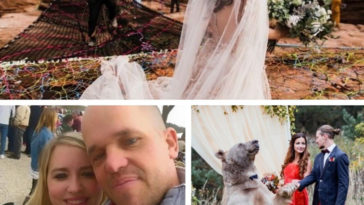 Три необычные свадебные истории