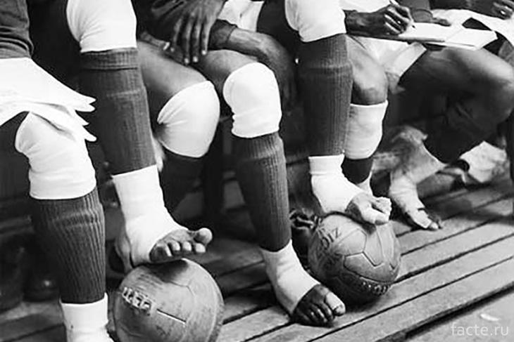 Босые ноги футболистов
