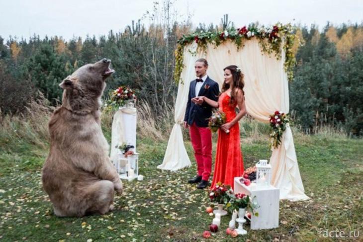 Свадьба Дениса и Нели