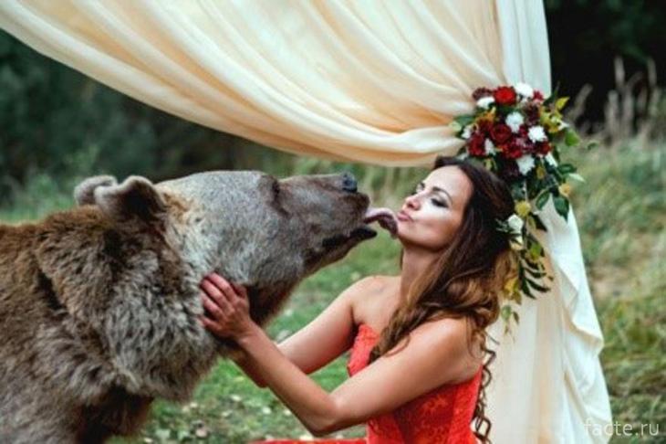 Добродушный медведь